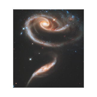 Rose of Galaxies Gallery Wrapped Canvas