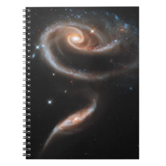 Rose of Galaxies Notebooks