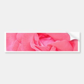 Rose of Love Bumper Stickers
