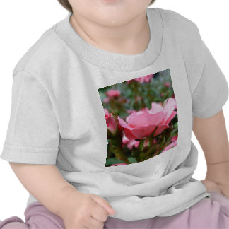 Rose of Love Shirts