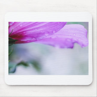 Rose of Sharon Mouse Pad