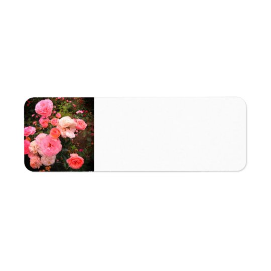 Rose Party Address Labels