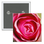 Rose Pedals Pinback Buttons