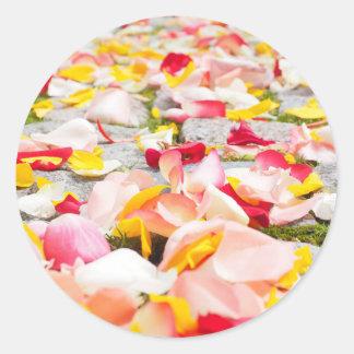 Rose Petals on Floor design Classic Round Sticker