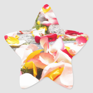 Rose Petals on Floor design Star Sticker