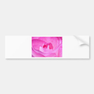 Rose Pink Bumper Sticker