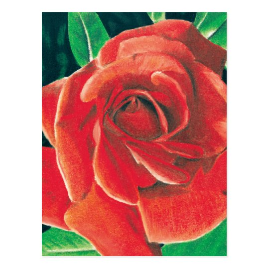 Rose Postcard by Jacob Grimm