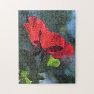 Rose Puzzle