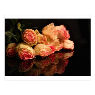 Rose reflection postcard