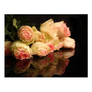 Rose Reflections Postcard