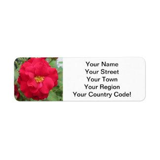 Rose Rote Blume Return Address Label
