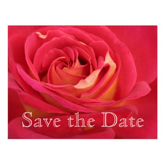 Rose Save the date 90th Birthday Celebration -
