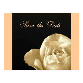 rose Save the date Postcard