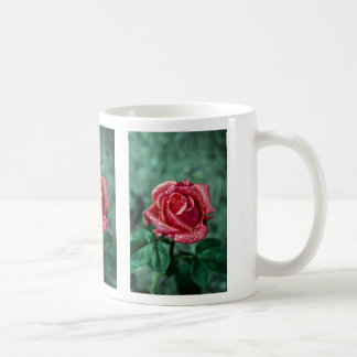 Rose, Shropshire Garden, after rain Coffee Mug