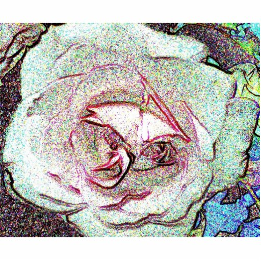 Rose sketch photo cut out
