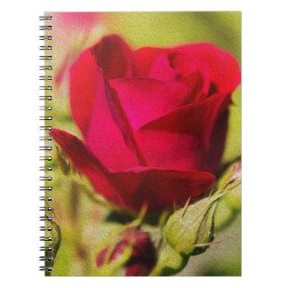 Rose Spiral Anteckningsbok