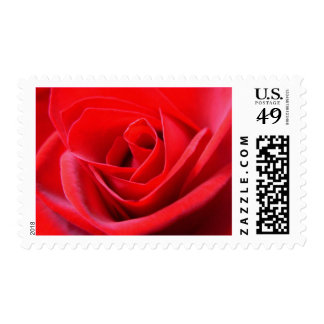 Rose Stamps Beautiful Red Flower Postage