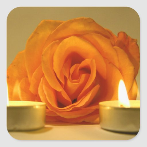 rose two candles yellow orange floral flower image sticker