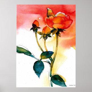Rose Watercolor Posters