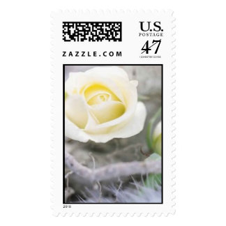 rose winter wedding stamp