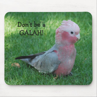 Roseate Cockatoo Don't Be A Galah Mouse Pad