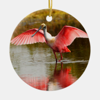roseate spoonbill and reflection christmas ornament
