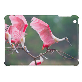 Roseate Spoonbills (Ajaia Ajaja) Landing Case For The iPad Mini