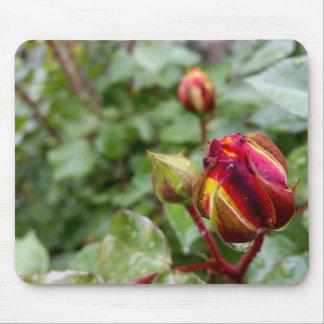 rosebud in the rain mouse pad