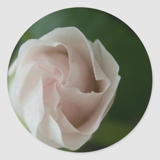 rosebud round sticker