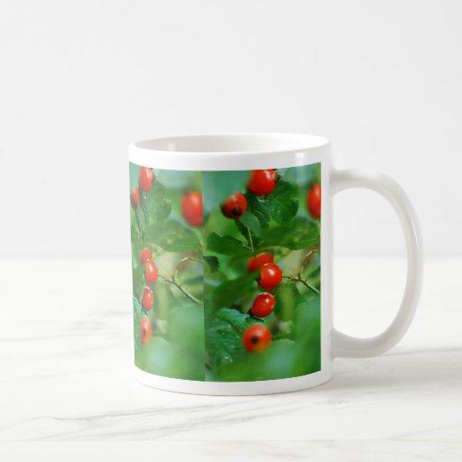 Rosehip bush after rain coffee mugs