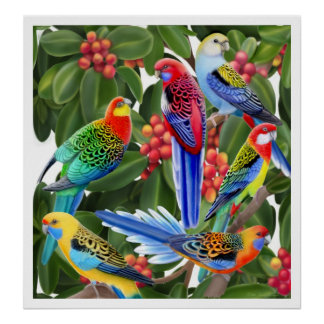 Rosella Parrots in Fig Tree Print