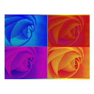 Rosen Postkarten