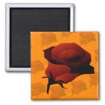 Rosen Röschen Magnets