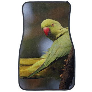 Roseringed Parakeet,Keoladeo National Park, Car Mat
