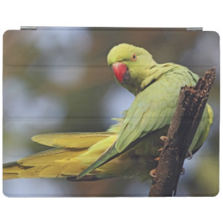 Roseringed Parakeet,Keoladeo National Park, iPad Smart Cover
