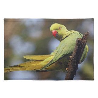 Roseringed Parakeet,Keoladeo National Park, Placemat