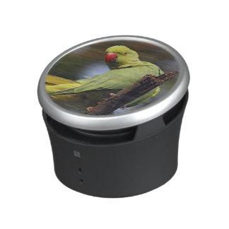 Roseringed Parakeet,Keoladeo National Park, Speaker