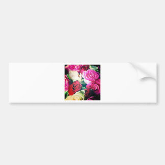 roses car bumper sticker
