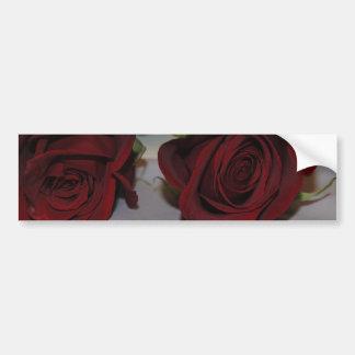 Roses Bumper Sticker Car Bumper Sticker