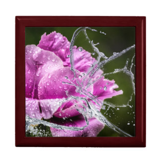 Rose's Dew Drop Butterfly Large Square Gift Box