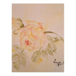 Roses Floral Art Flowers Original Painting Postcard