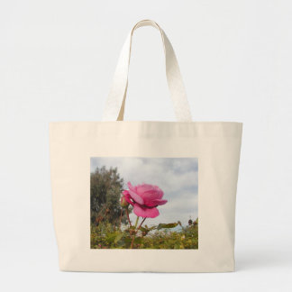 Roses Flowers Plants Sky Clouds Trees Bags