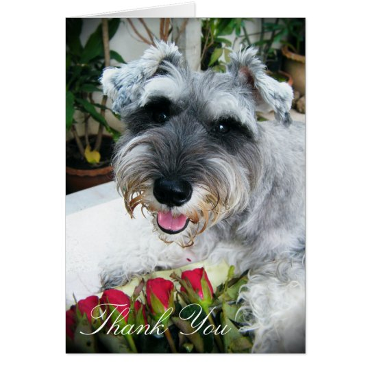 Roses For You - Thank You Card