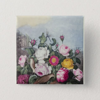 Roses, from 'The Temple of Flora' 15 Cm Square Badge