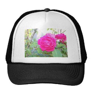 roses mesh hat
