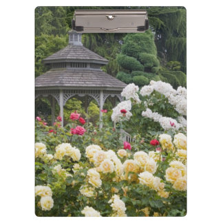 Roses in bloom and Gazebo Rose Garden at the Clipboard