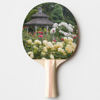Roses in bloom and Gazebo Rose Garden at the Ping Pong Paddle