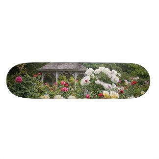 Roses in bloom and Gazebo Rose Garden at the Skateboards
