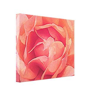 Roses In Macro, Canvas Print