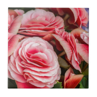 roses in the garden small square tile